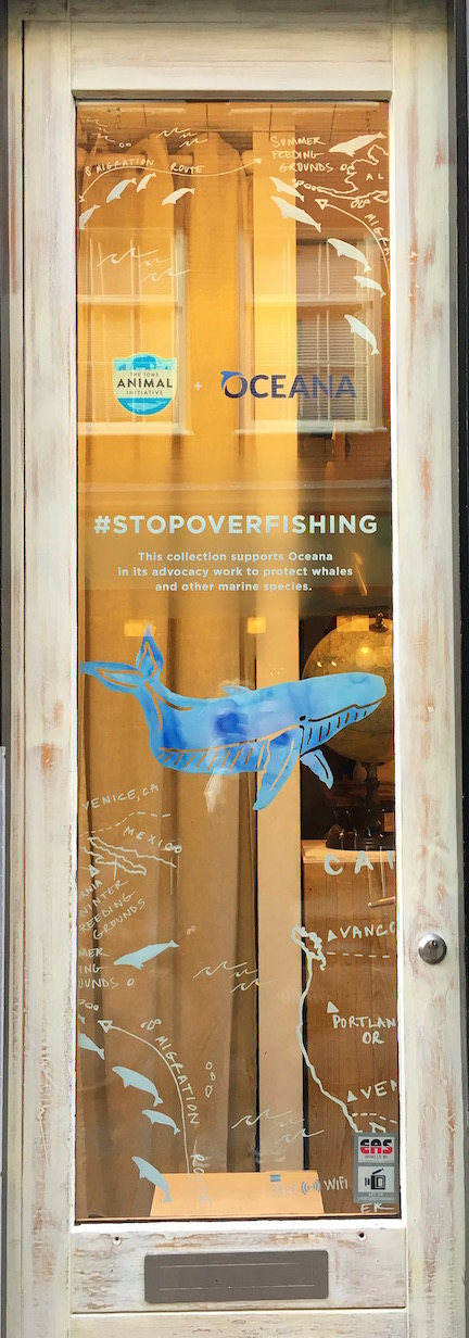 TOMS Animal Initiative x Oceana - TOMS London / Window decals