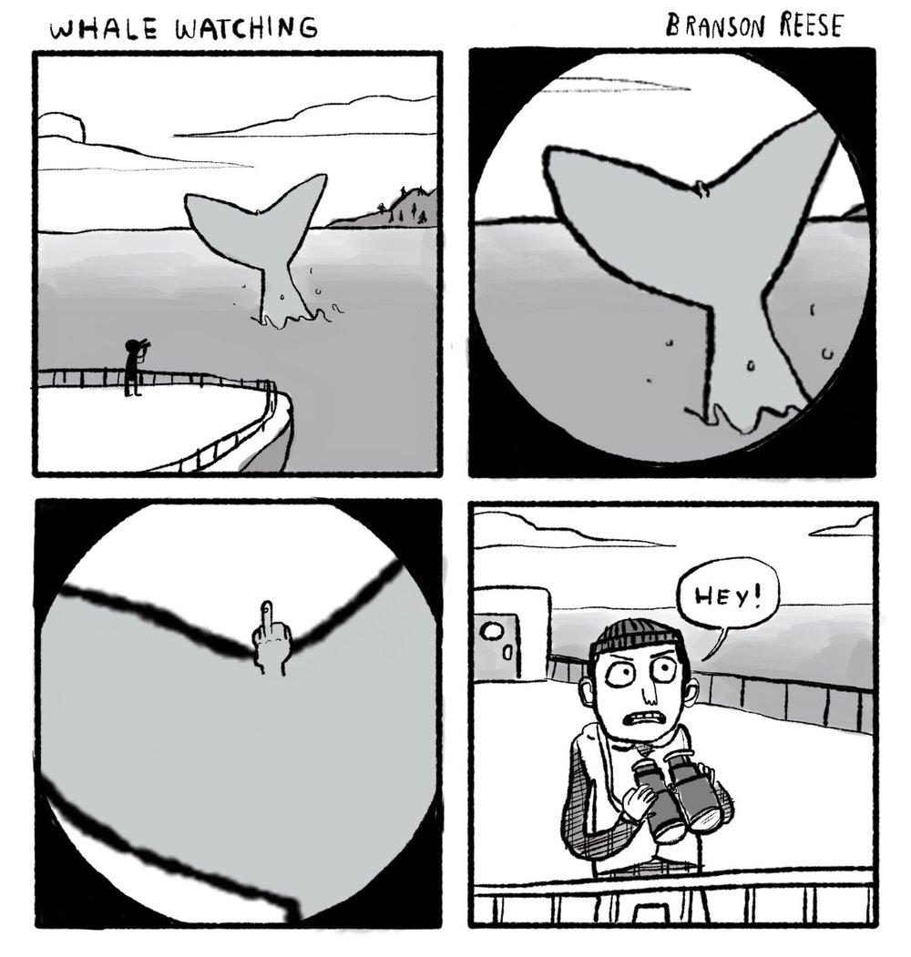 0075 whalewatching3.jpg