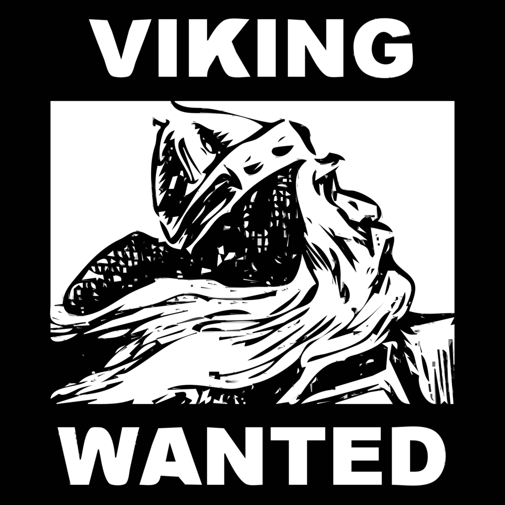 request-Character-13-VIKING-2015072626.png