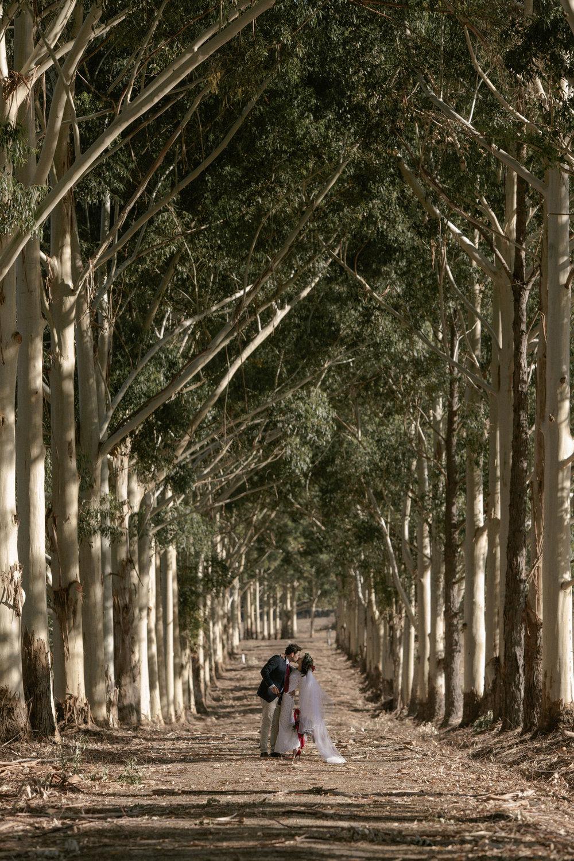 LEFANU - CARTER & ROSE PHOTOGRAPHY - 187.JPG
