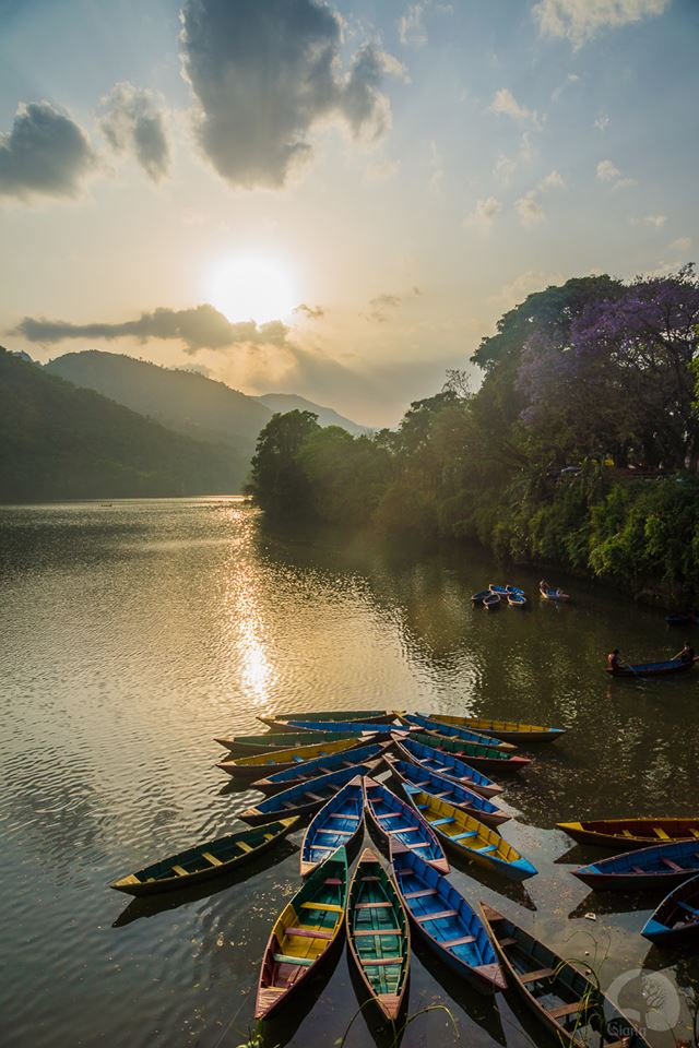 Chiều tà trên hồ Phewa. Ảnh chụp bởi Hoang Le Giang