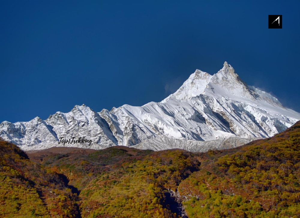 Manaslu Himal eight highest peak in the world seen from Samagaeon