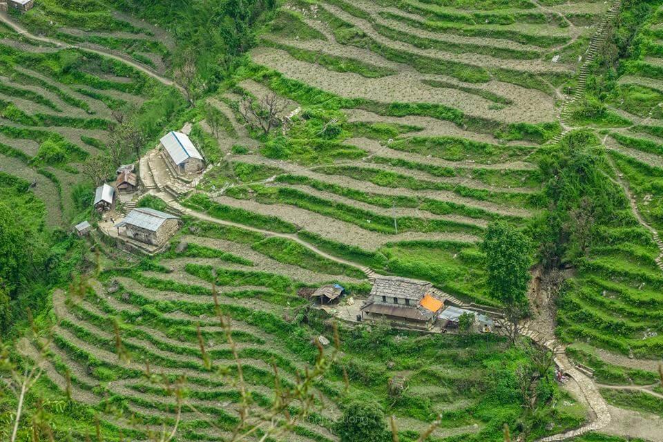 Charming stone house dot the rice paddies