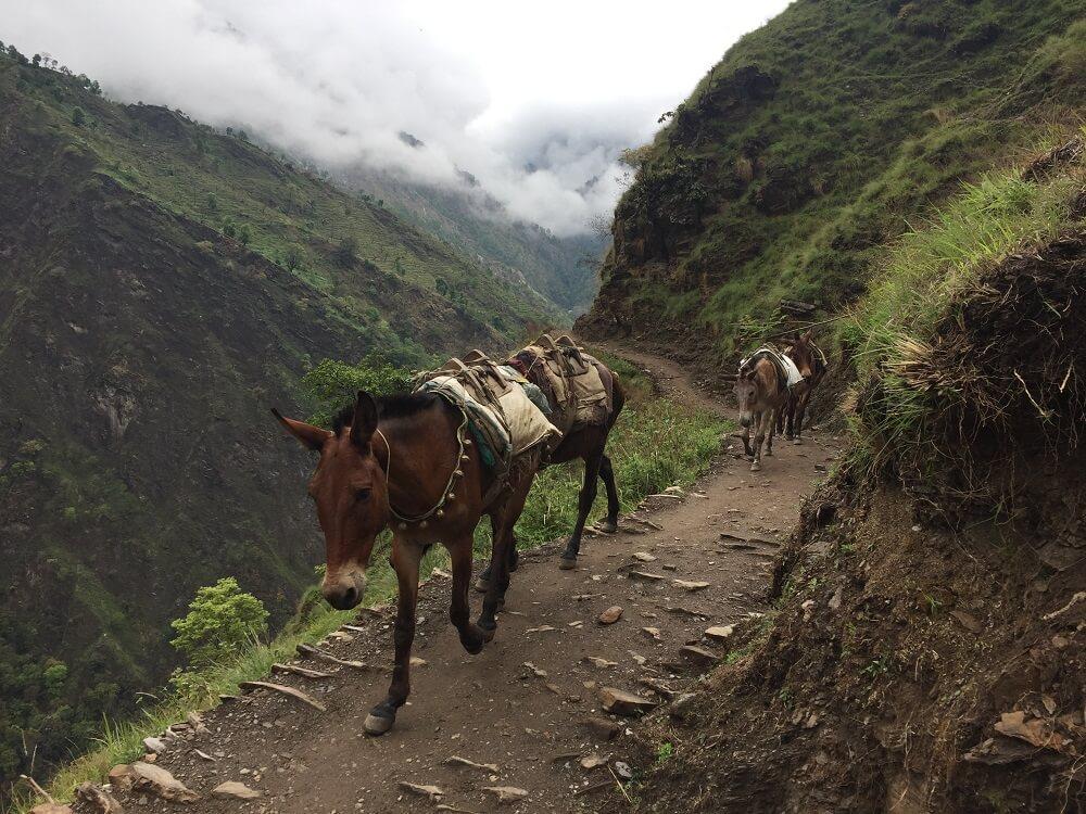 Một con đường mòn vắt ngang núi cung Manaslu Circuit