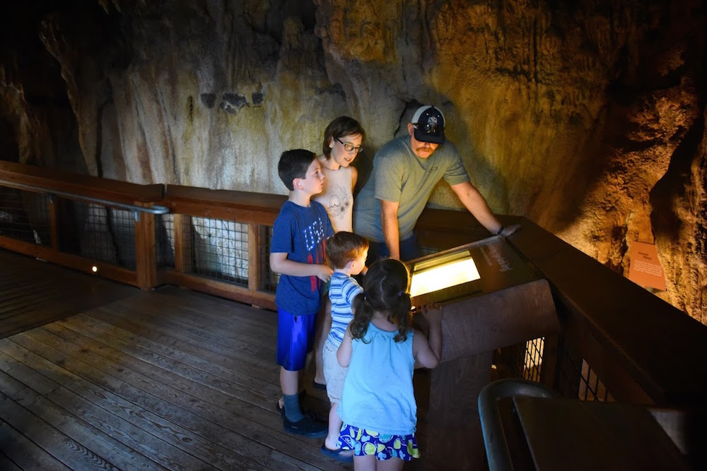 Turtle Bay Exploration Park Shasta Caverns.jpg