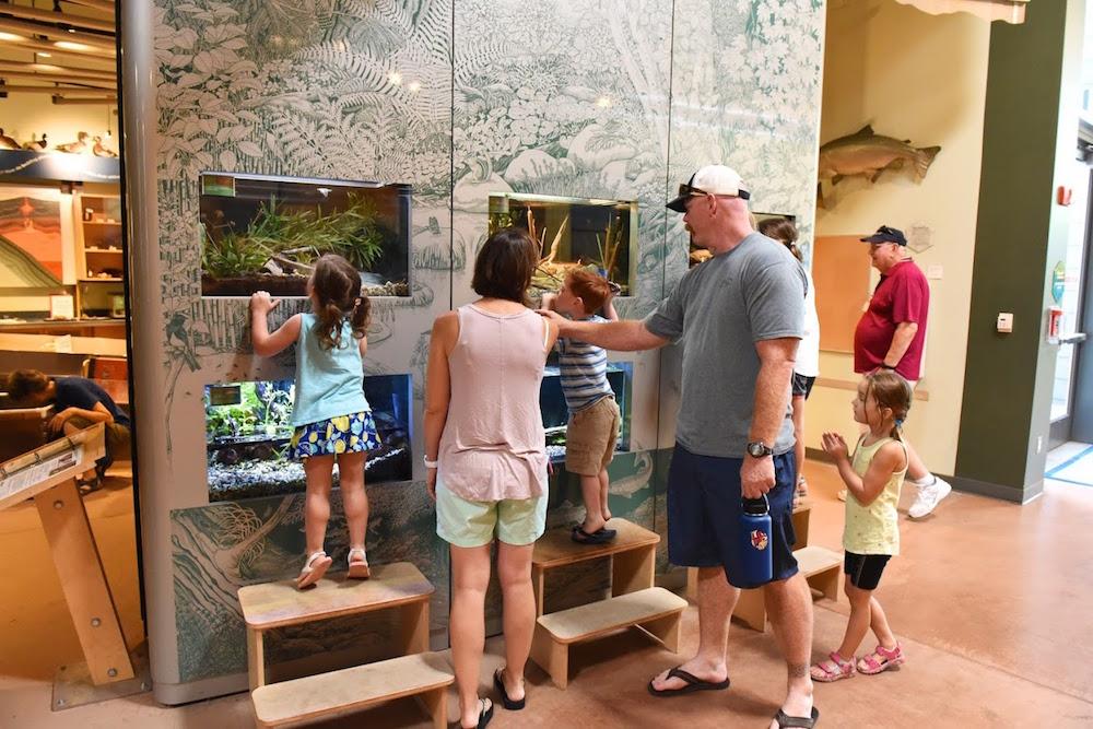 Turtle Bay Redding Museum.jpg