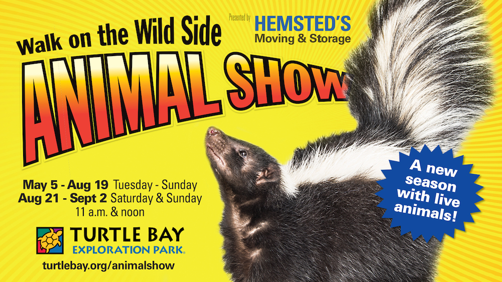 TBMK-AnimalShow-2018-video-slide-1920x1080-F.jpg