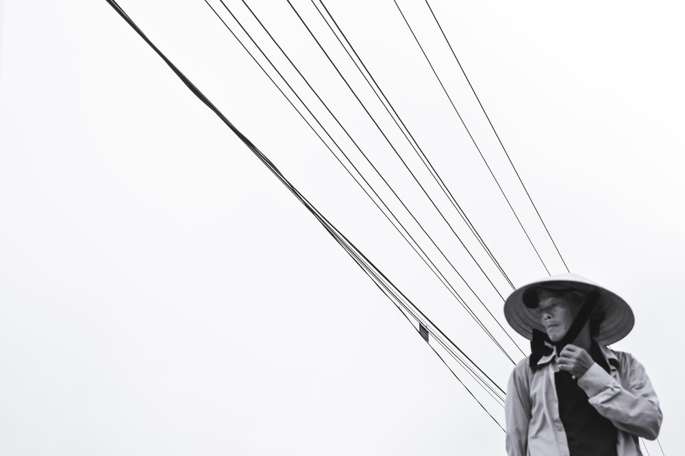 Vietnam-powerline-walker
