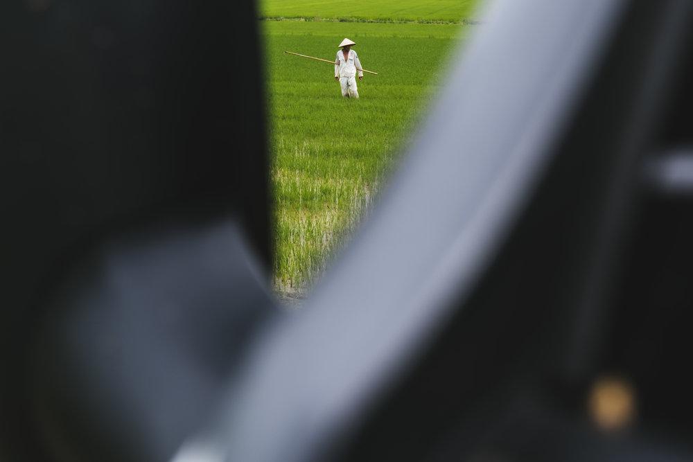 Vietnam-field-worker