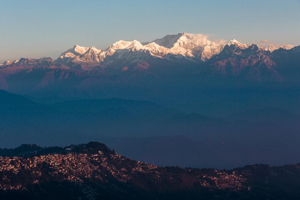 Darjeeling-Mellor