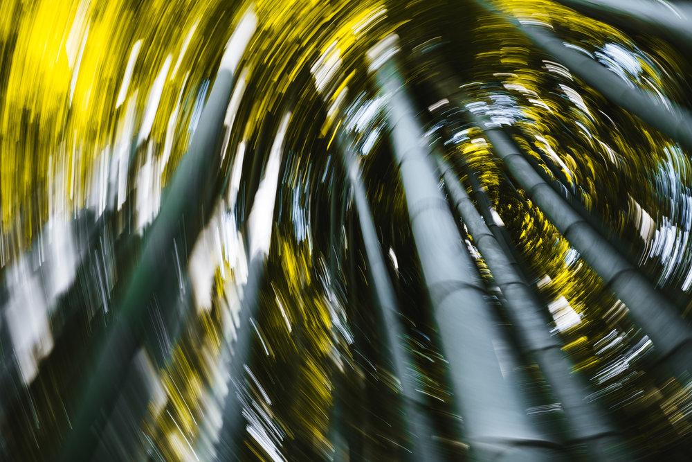 arishiyama-bamboo.jpg