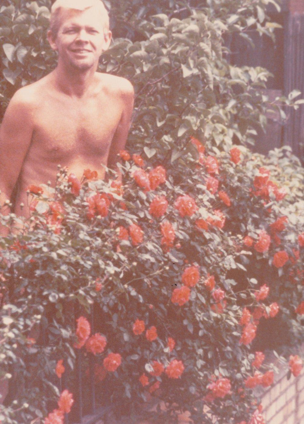 rosebush.jpeg