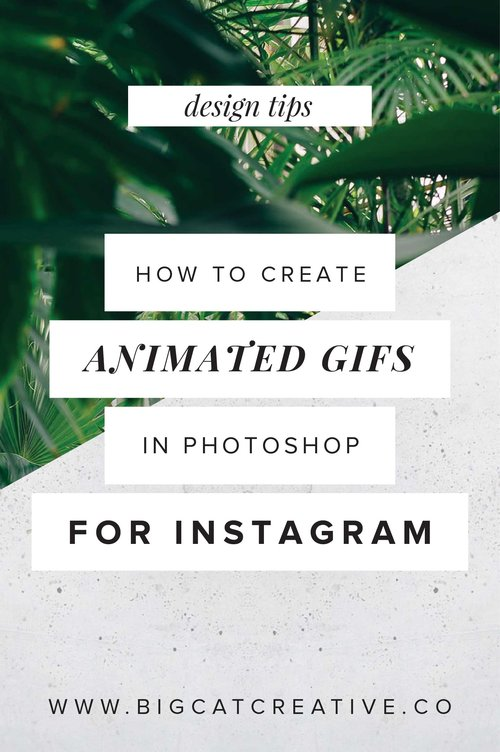 How To Create Animated Gifs In Photoshop For Instagram Big Cat