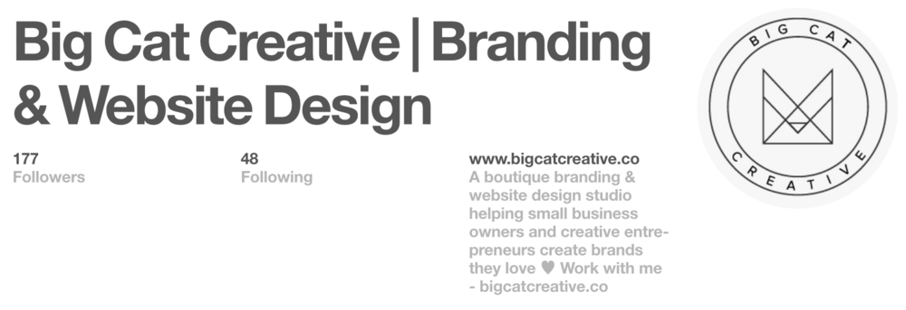 Pinterest For Business Strategy Big Cat Creative.png