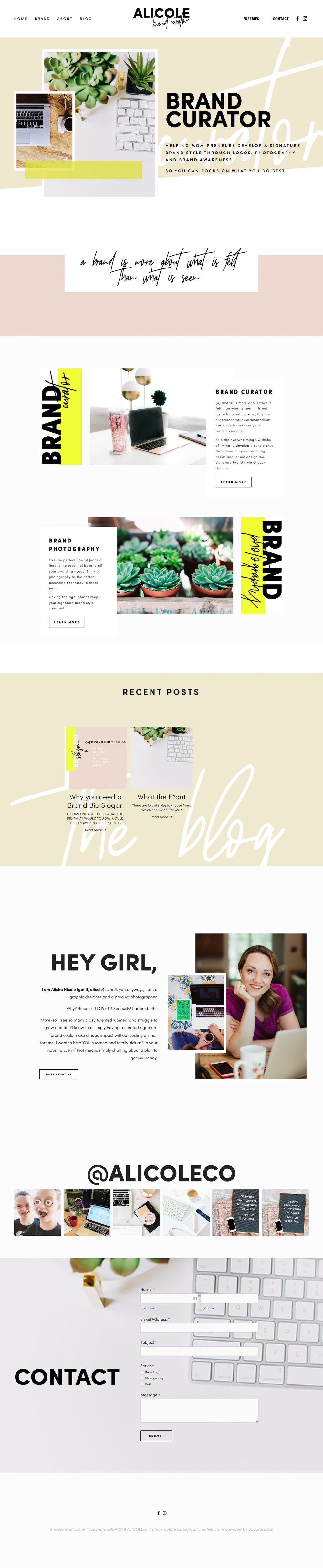Big-Cat-Creative-Squarespace-Website-Templates---Alicole.jpg
