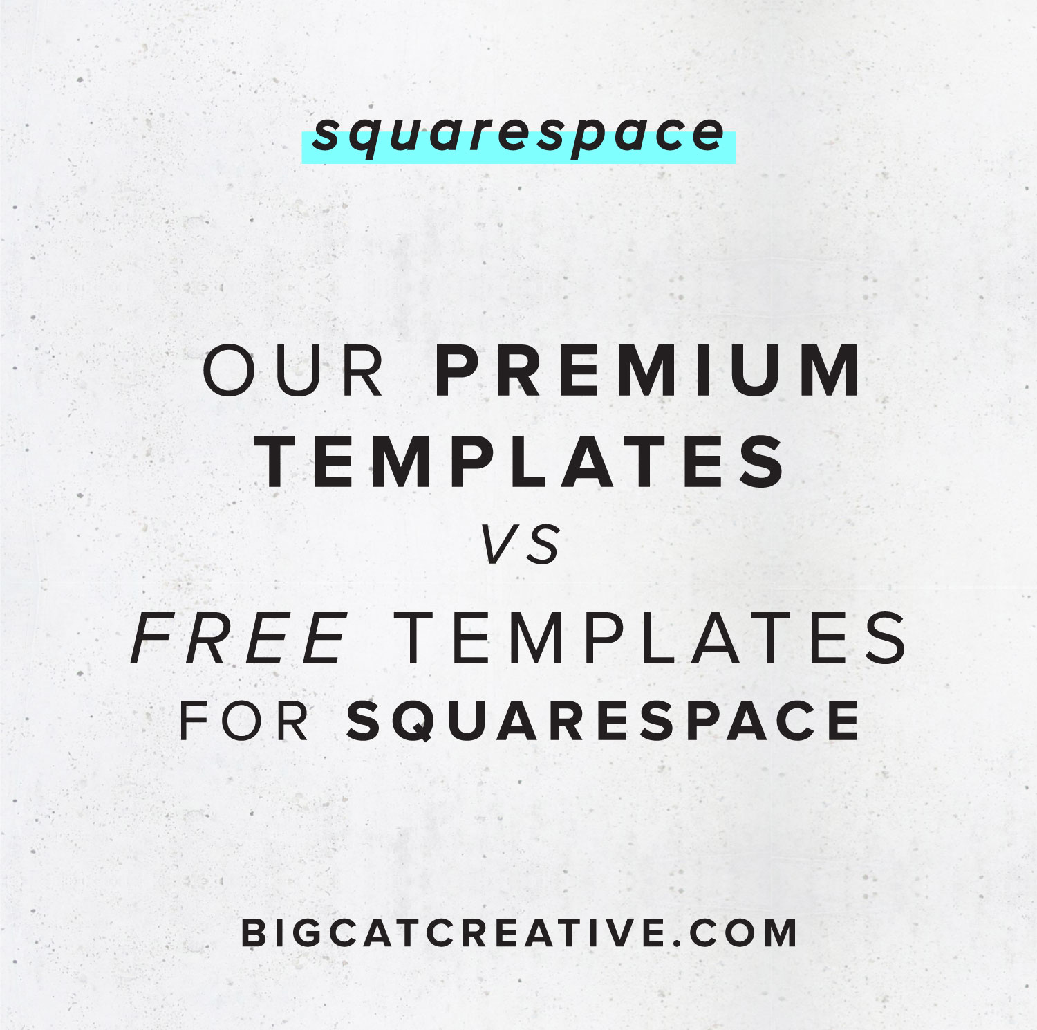 our premium squarespace templates vs the free squarespace templates big cat creative squarespace templates