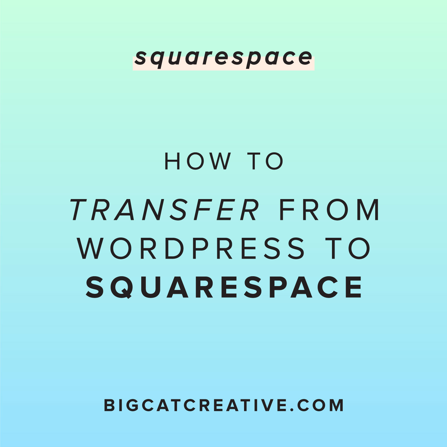 How to Easily Transfer From Wordpress to Squarespace — Big Cat