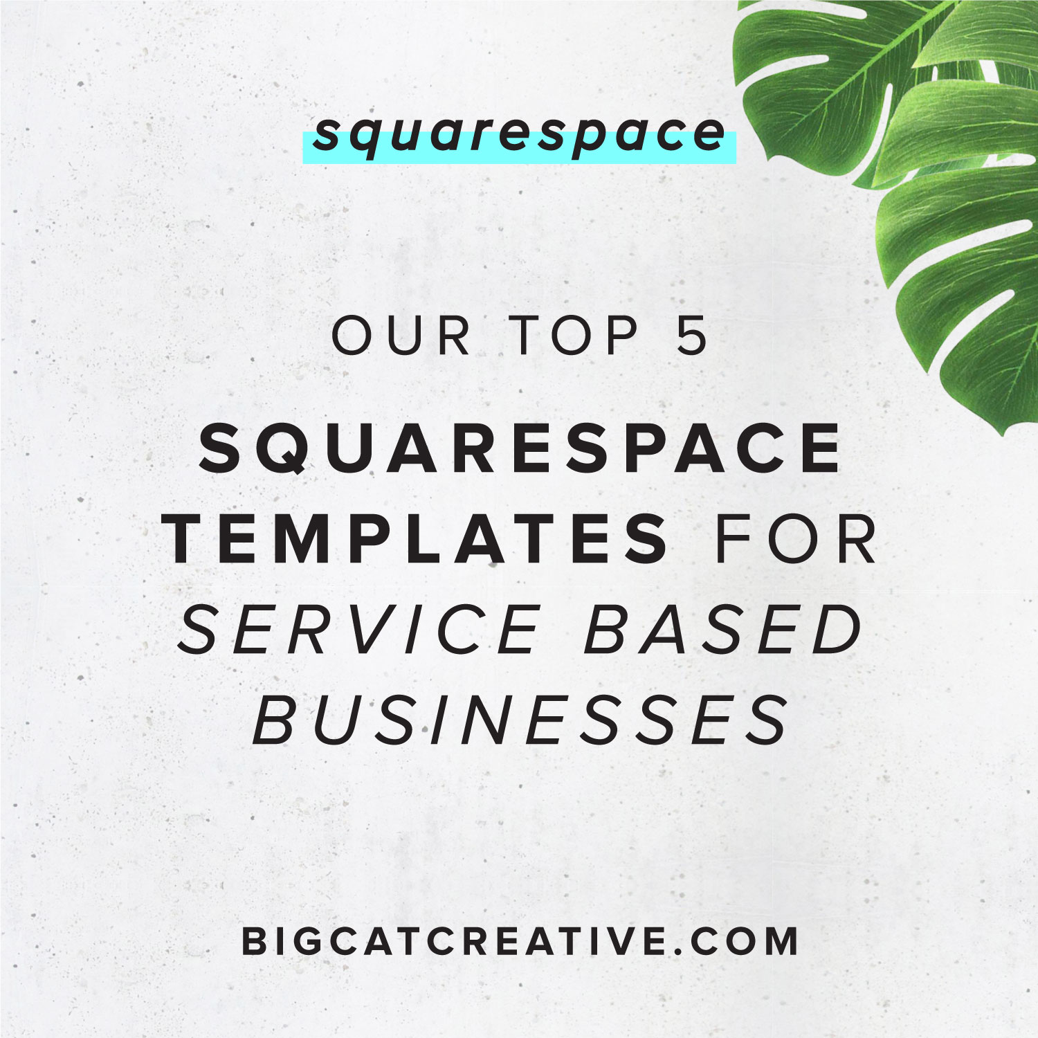 our top 5 squarespace templates for service based businesses big