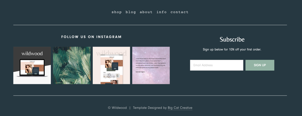 How to add a newsletter sign up to your footer in Squarespace - Big Cat Creative