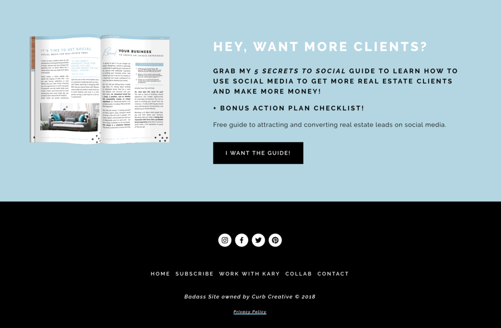 How to promote a freebie in your footer in Squarespace - Big Cat Creative