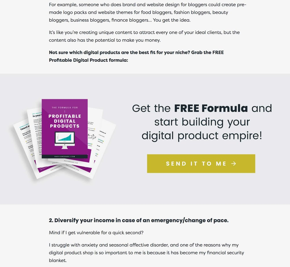 How to Add Your Promotional Offer into your Blog Post in Squarespace - Big Cat Creatuve