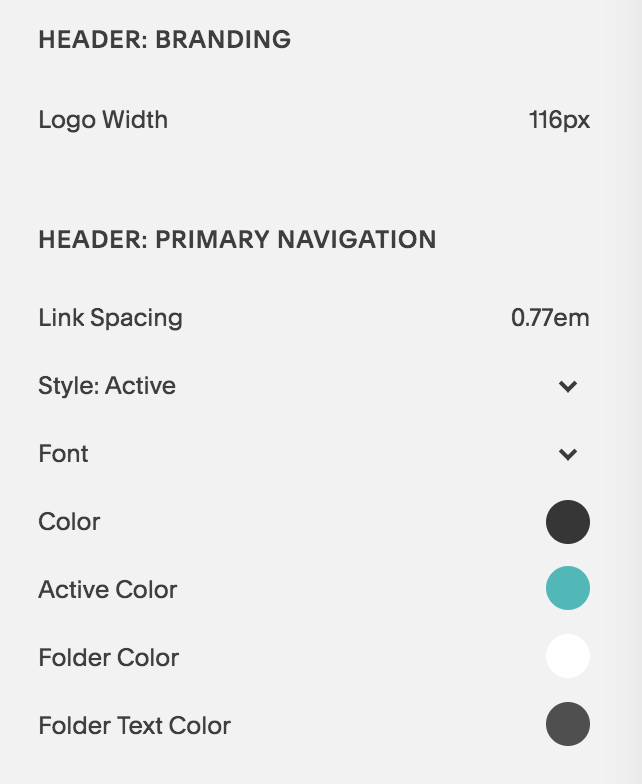 Brine is the Best Squarespace Template - An example of the advanced Manu Navigation Settings - Primary Navigation.png