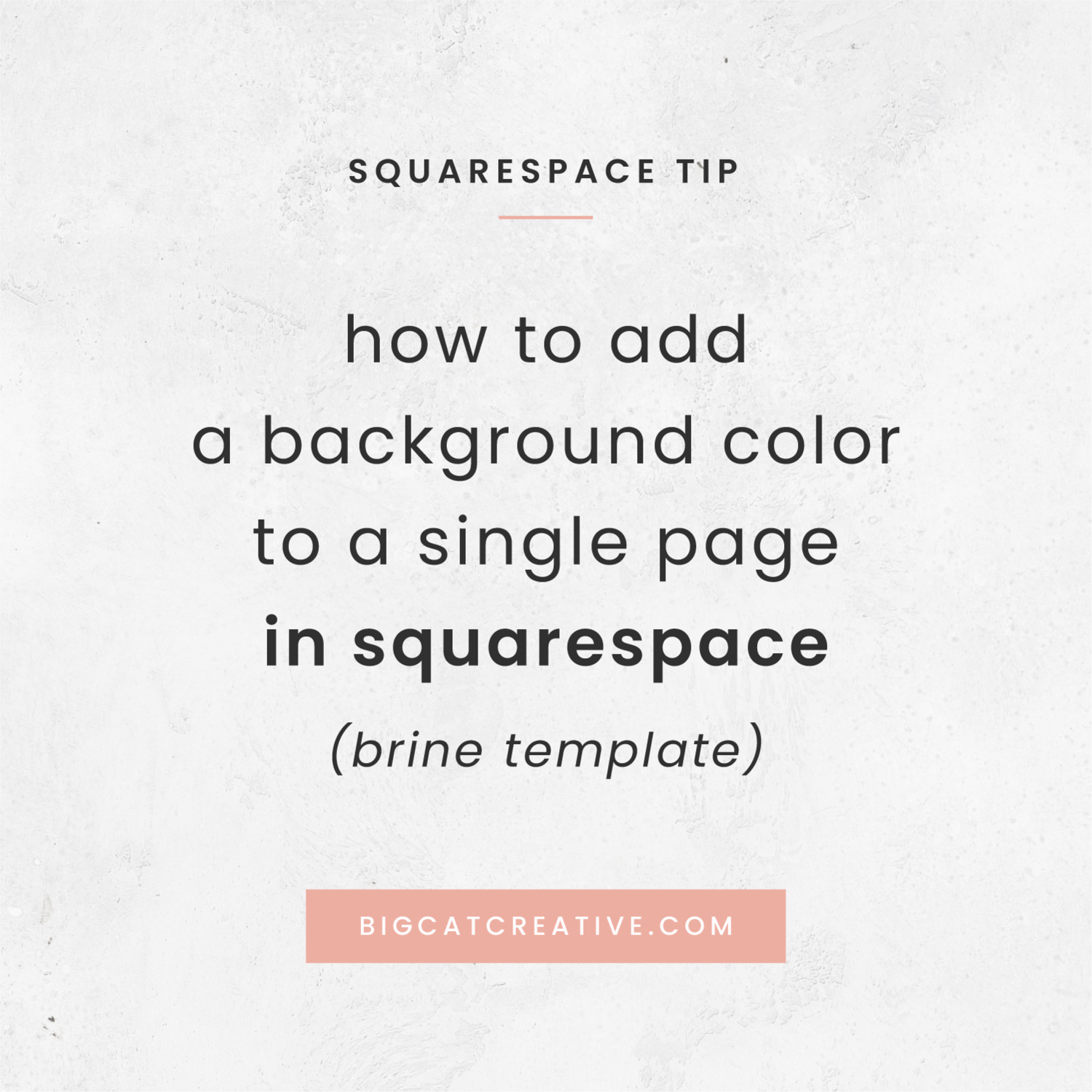 How To Change The Background Color Of A Single Page In Squarespace Brine Template Big Cat Creative Squarespace Templates