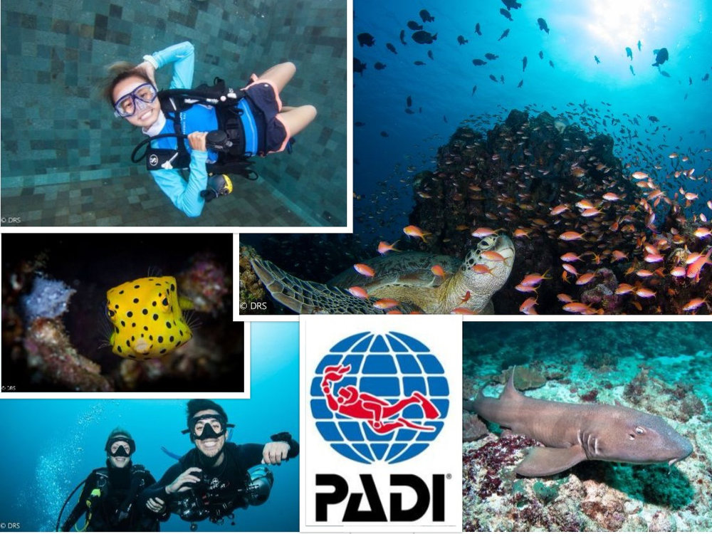 PADI Advanced Open Water.jpg