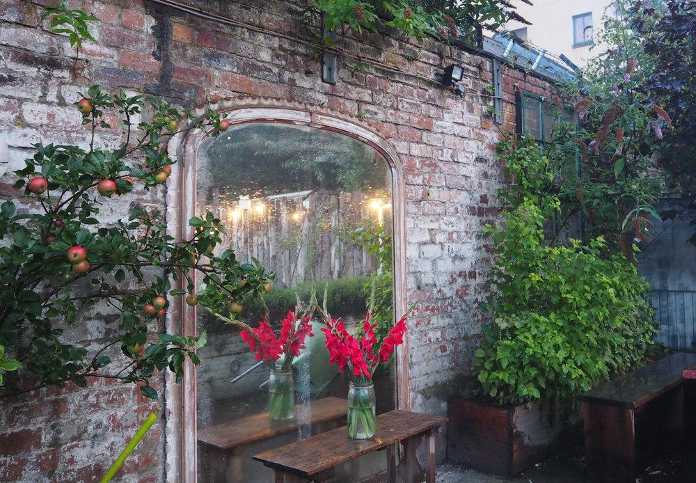 Beetroot Sauvage Garden