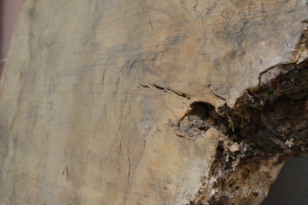 Takumi Woodwork - Oak Slab 01c