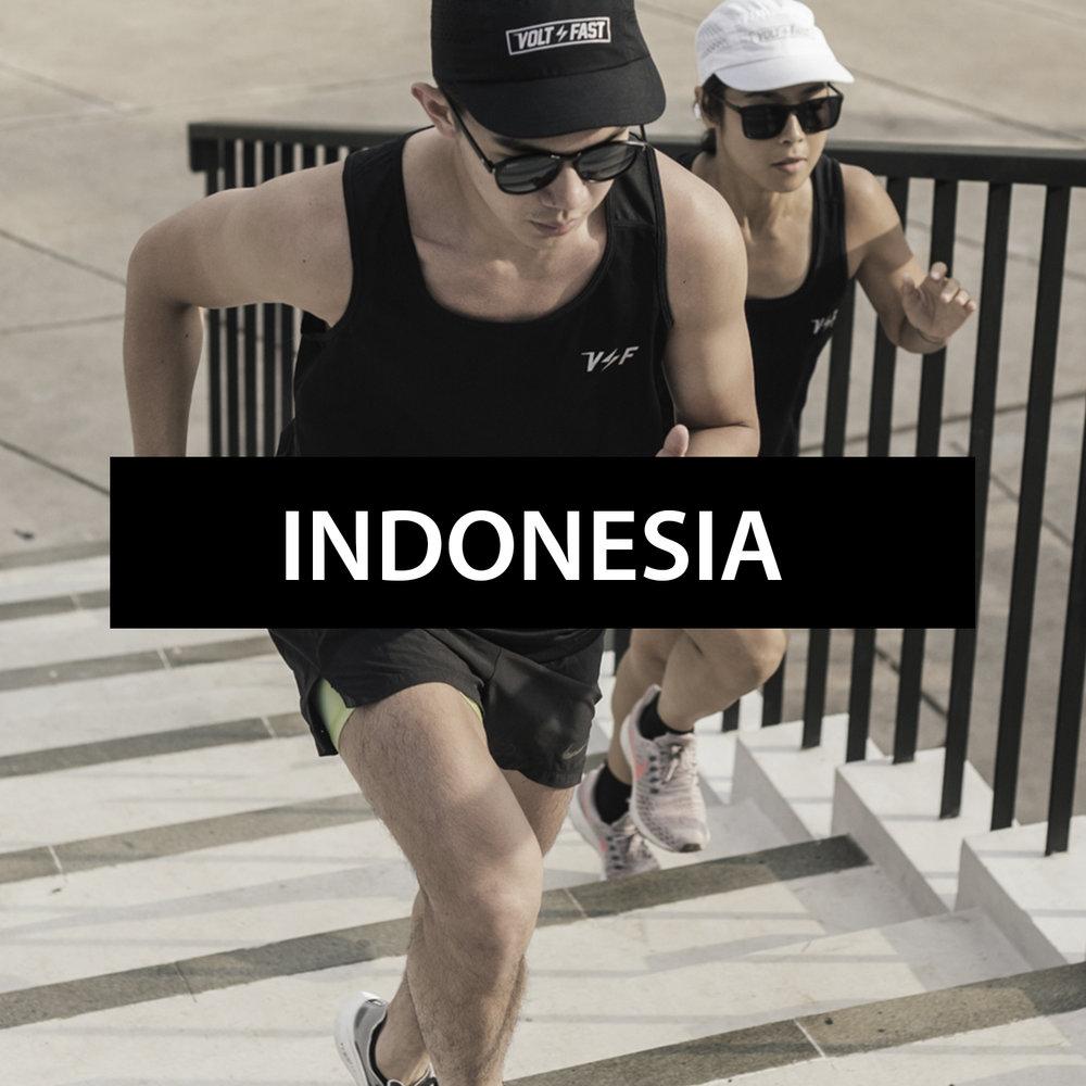 shop_banner_indo_coloer.jpg