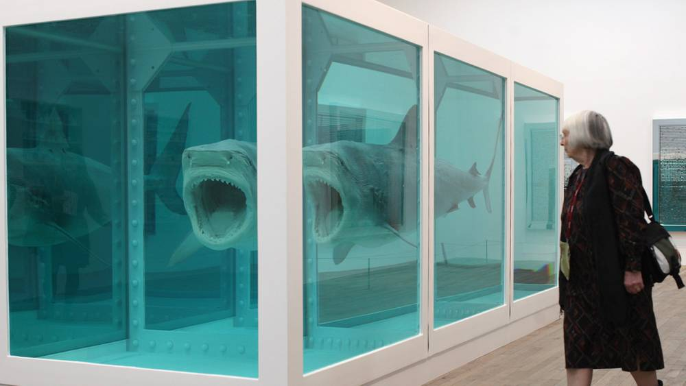 Damien hirst shark in formaldehyde sold for £9.6 million at the sothebys auction