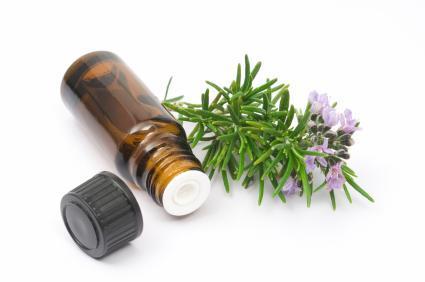 Aromatherapy - rosemary.jpg