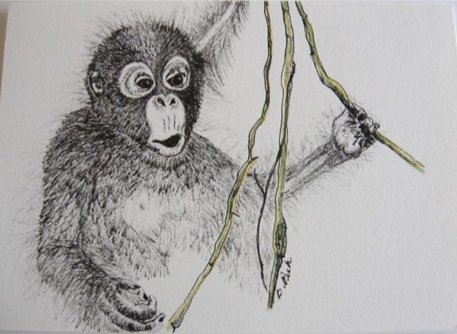 Monkey Notecards