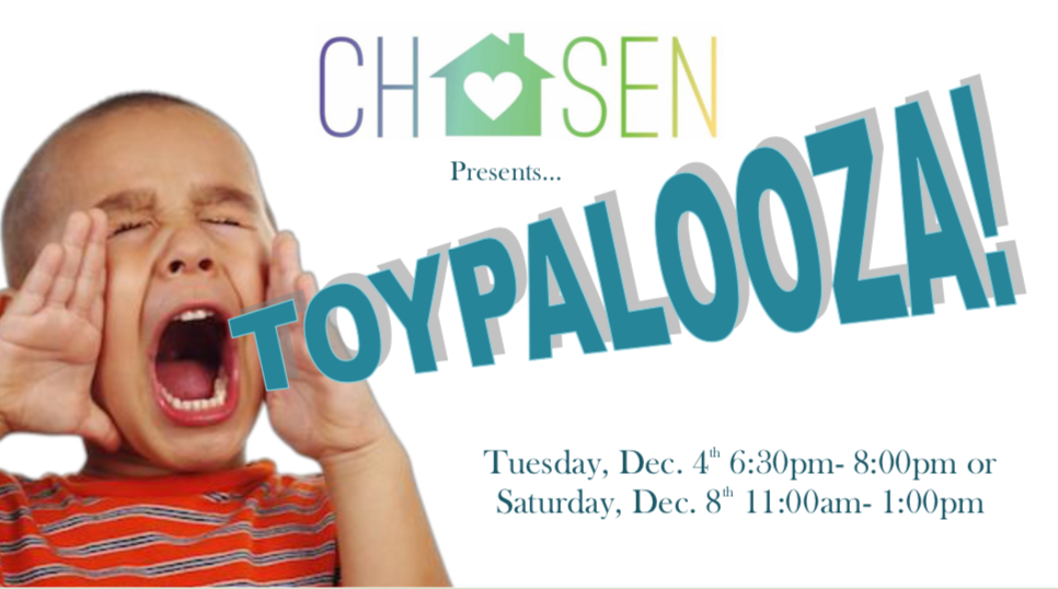 Toypalooza Picture 1.png