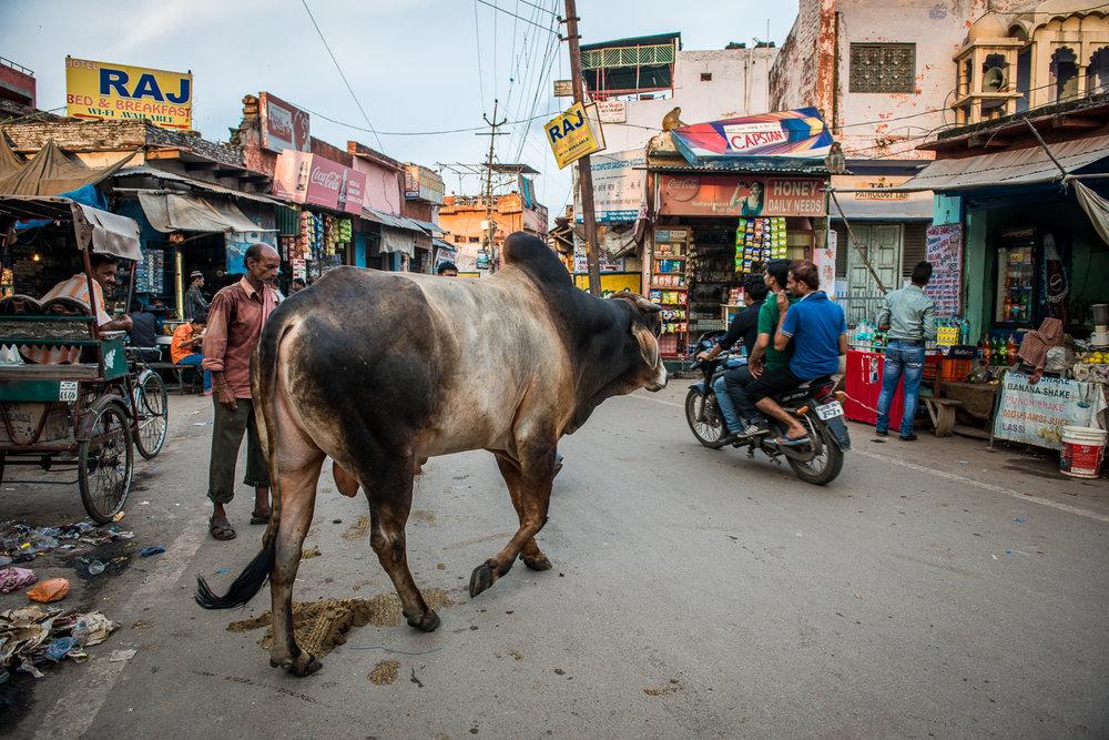 Agra 27 Viajar Inspira