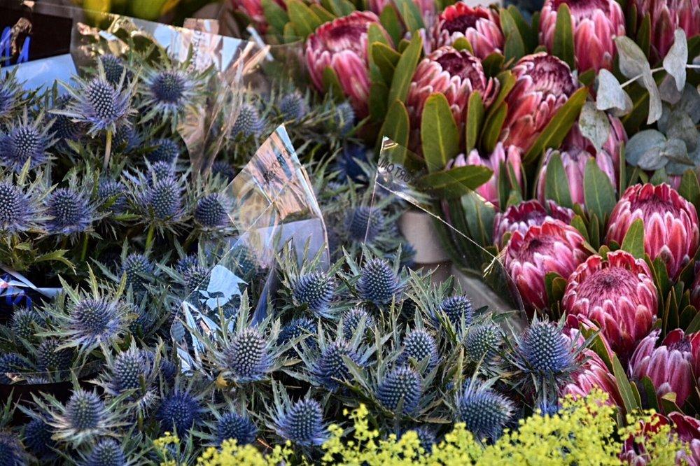 Estocolmo 1 flowers Viajar inspra