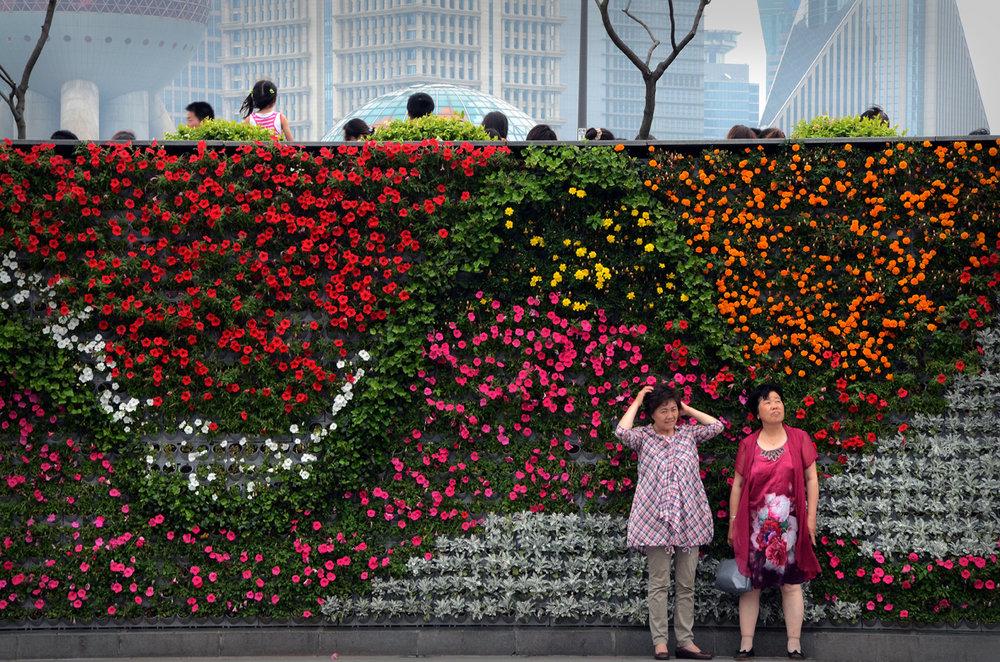 Shanghai  paredes de flores.jpg