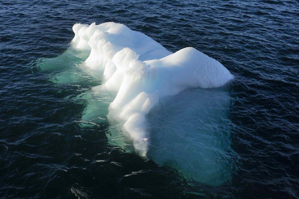 Ice floating in Nuup Kangerlua, Greenland Photo: Studio Olafur Eliasson © 2018 Olafur Eliasson