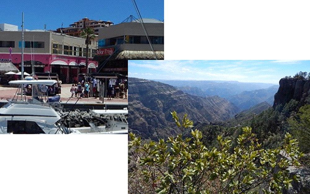 seaofcortez 5 tourism.jpg