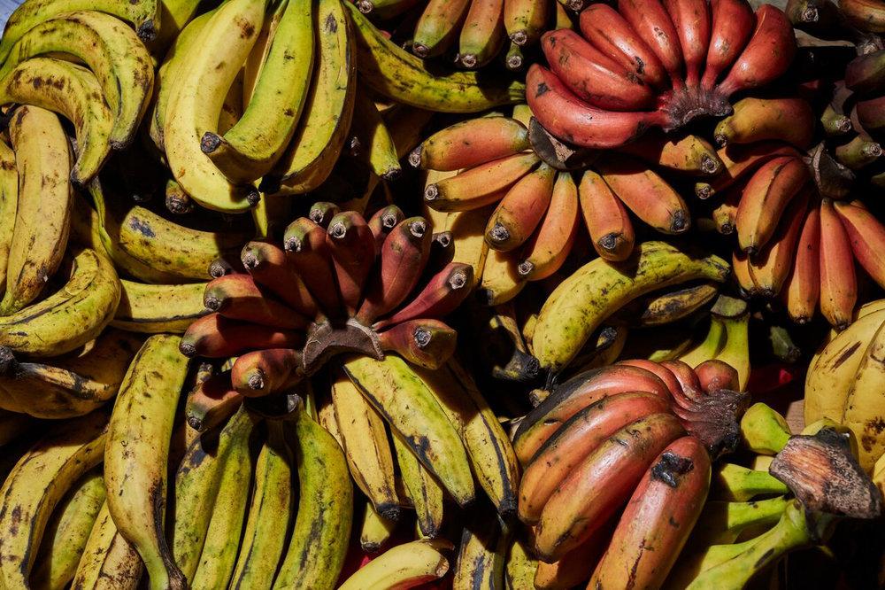 Bananas Miahuatlán