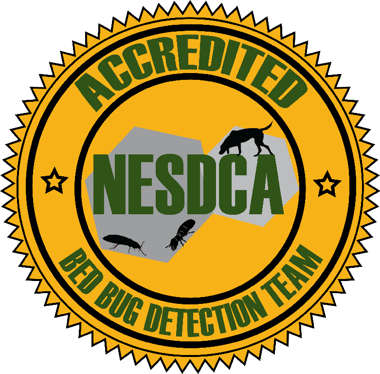 nesdca.png