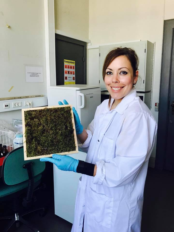 Our professional environmental engineer, Noelia Marin has just built a moss panel. Check it out!#nordicmoss - #nordicmoss