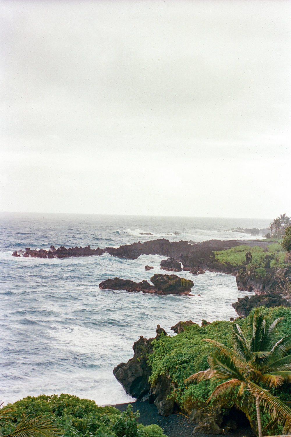 kels&michael_Maui-17.jpg