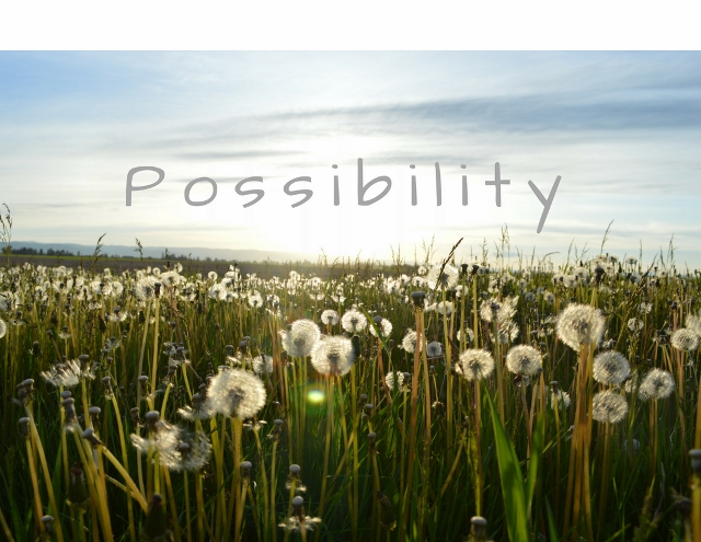 possibility-640x495