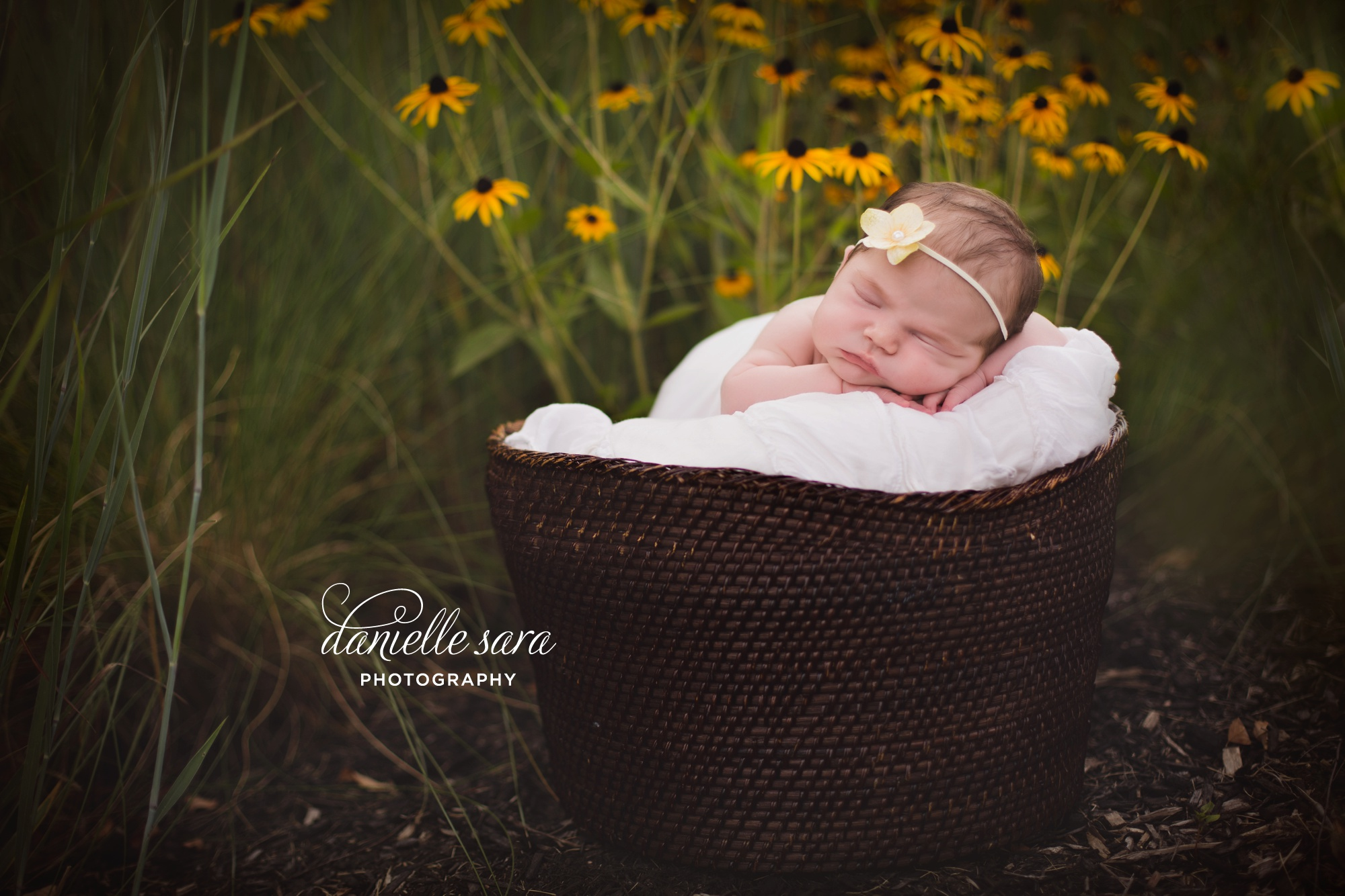 newborn portraits in the flowers