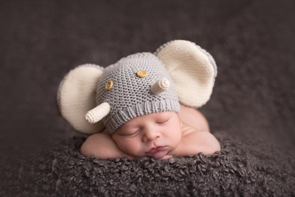 Newborngallery (4).jpg