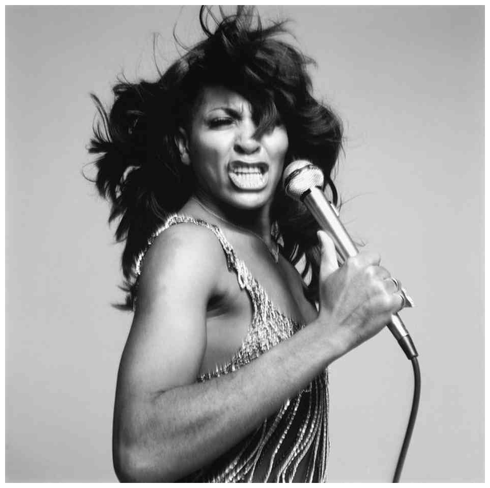 tina-turner-richard-avedon-1991.jpg