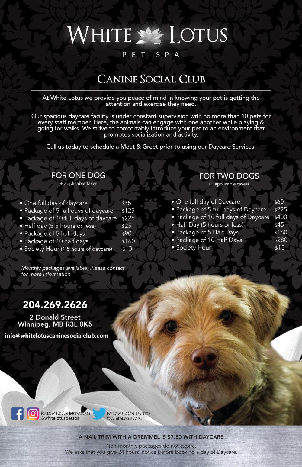 CanineSocialClub2019.jpg