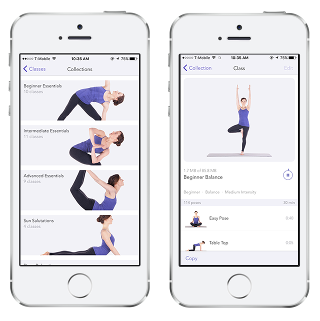 gaiam-in-app